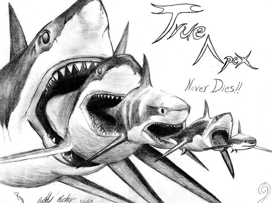 Shark Eat Shark World by Sharktoz