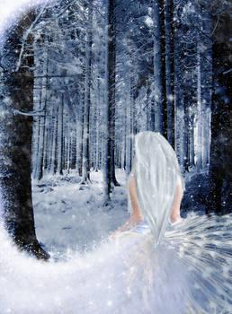 Walk through Snow-Valley-Woods