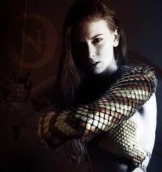 Warrior by Dark-Renaissance
