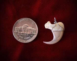Bobcat Claw Pendants: $20.00 by NaturePunk