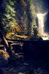 Falls Creek Falls by NaturePunk
