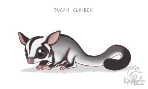 Sugar Glaider by Aleatorik