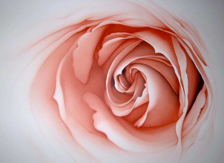 rose by moogoorel