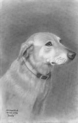 Sandy, the dog