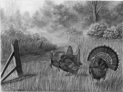 Wild Turkeys by MechanicalGraphite