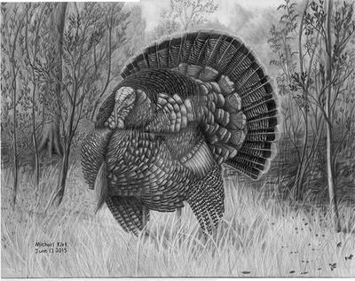 Strutting Turkey by MechanicalGraphite