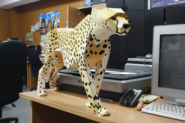 Cheetah from A1 paper format by fpanther