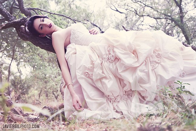 Bridal 3 by Javiergil1910