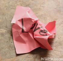 Your Lies by WildWinyan