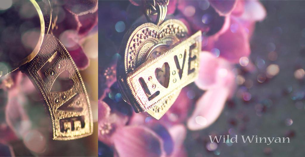 Love's Locket by WildWinyan