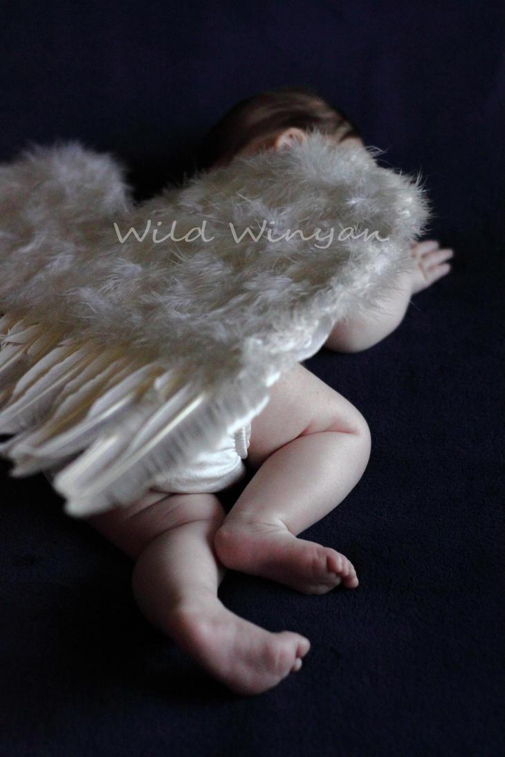 Angel Baby by WildWinyan