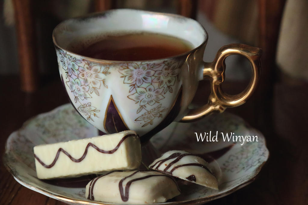 Elegant Hour by WildWinyan