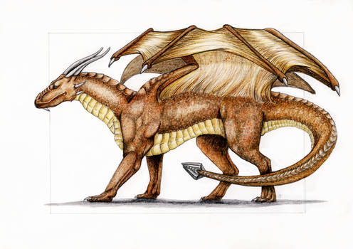 Draconniss the brown dragon