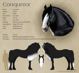 Reference Sheet - Conqueror