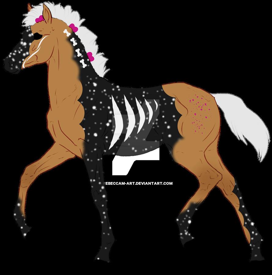N7610 Padro Foal