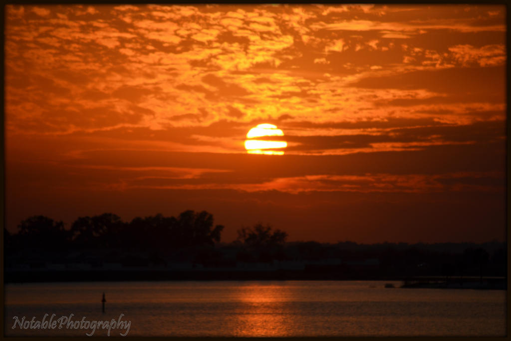 Florida Orange by NotablePhotography