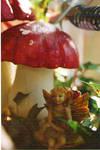 Fairy and Mushroom by WanderingSoul-Stox
