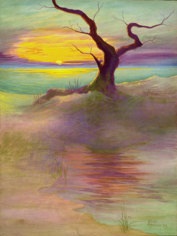 Lone Beach Tree