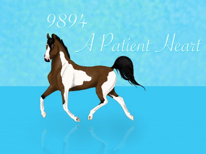 9894 A Patient Heart by artisinmyheart101