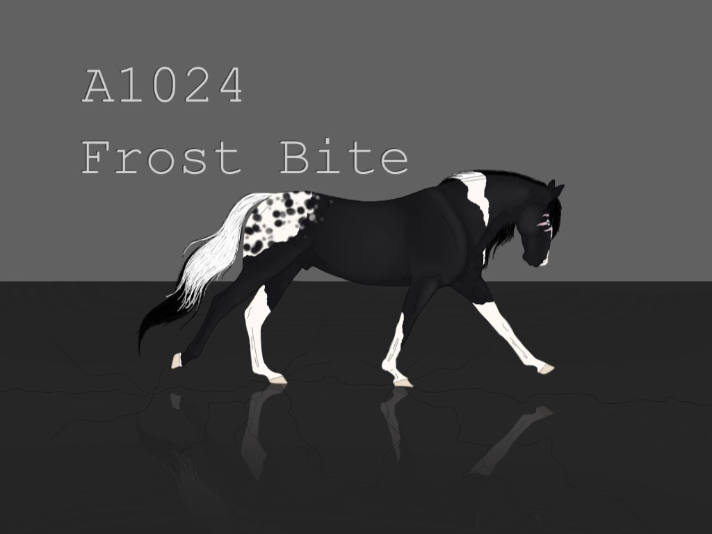 A1024 Frost Bite by artisinmyheart101
