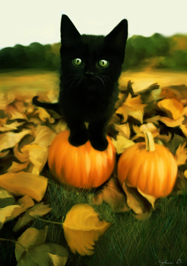 MY Pumpkin by Malla13
