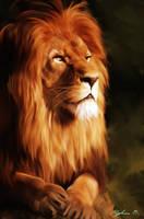 Lion by Malla13