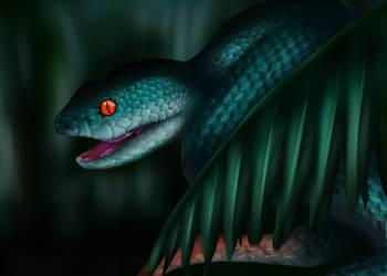 White-lipped Island pit viper