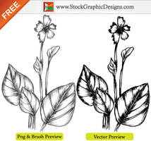 Hand Drawn Sketchy Plant Vector by Stockgraphicdesigns