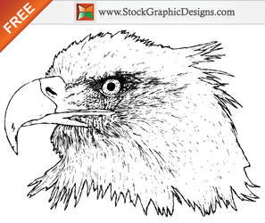 Free Hand Drawn Eagle Vector by Stockgraphicdesigns