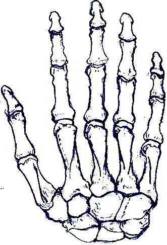 skeleton hand by ladyham pie on deviantart fingers crossed good luck clipart fingers crossed clip art images