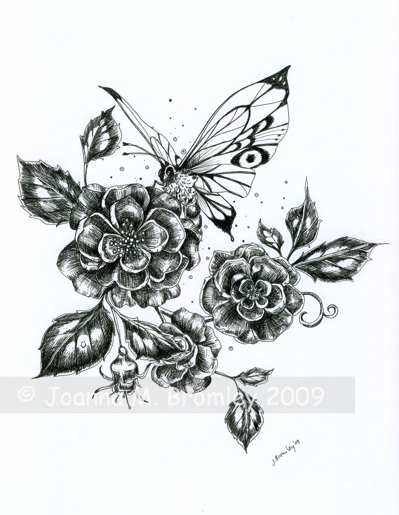 Roses And Butterflies Drawings Wild Roses and ...