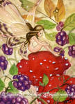 ACEO Blackberry Fae