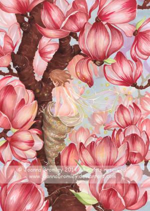 Magnolia Awakening 2014 by JoannaBromley