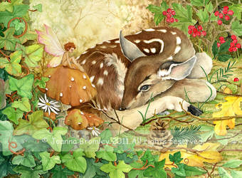 Resting Fawn by JoannaBromley