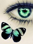 One Last Butterfly