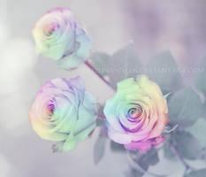 Rainbow Roses by Kizuna-chan