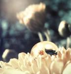 Pure Light Flower Drop