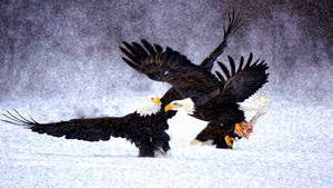 Two Eagles