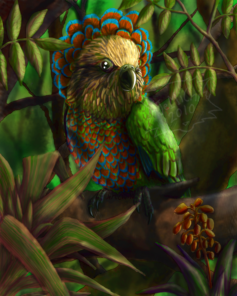 Hawk-headed Parrot by JeMiChi