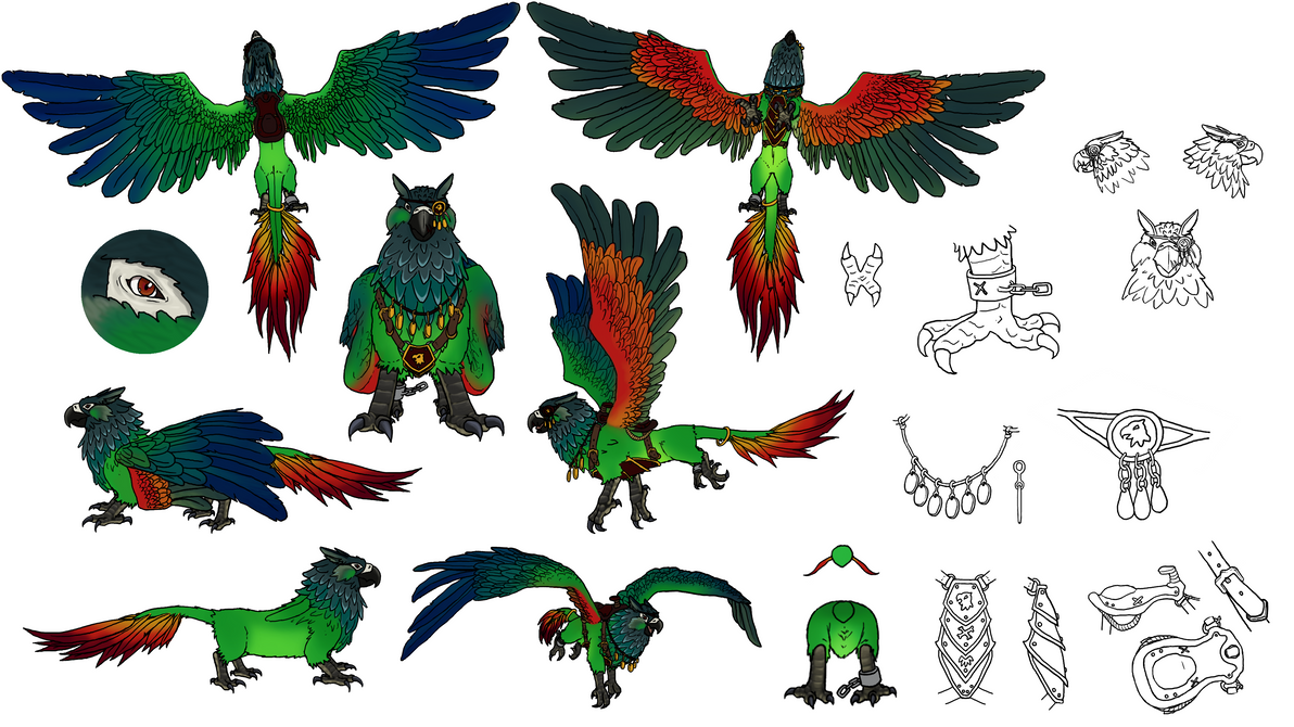 pyrrhura_griffin_concept_by_jemichi-dbji8c9.png
