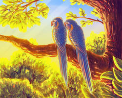 Blue Throated Macaws by JeMiChi