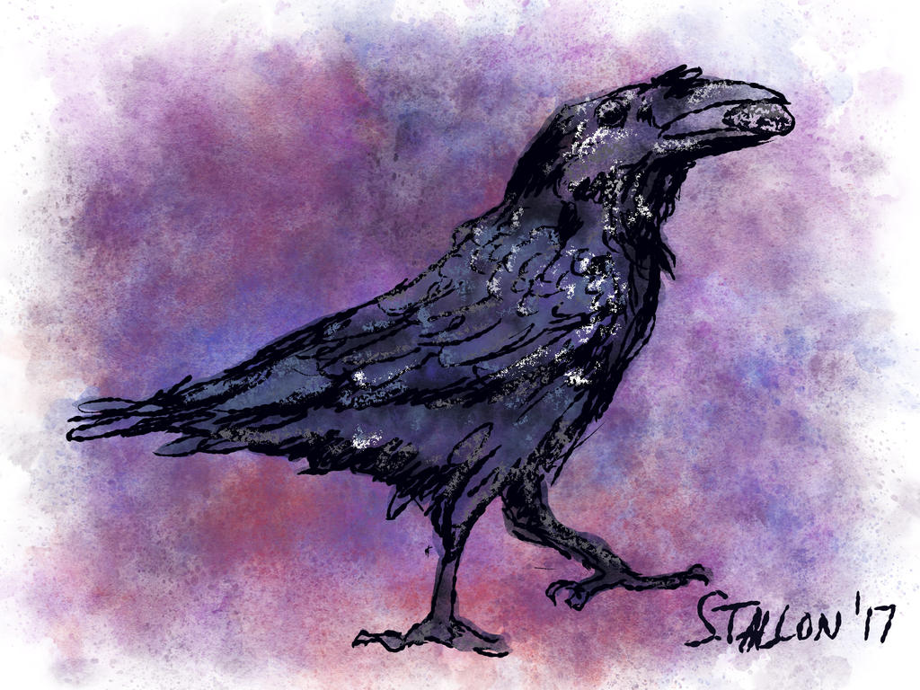Raven test by Puddingbat