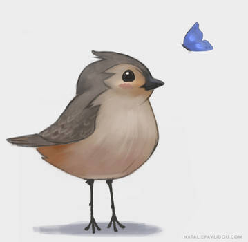 Birdie and friends