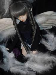 Feathers by Kitsunefurryfox