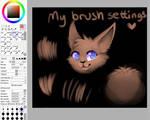 My Brush setting