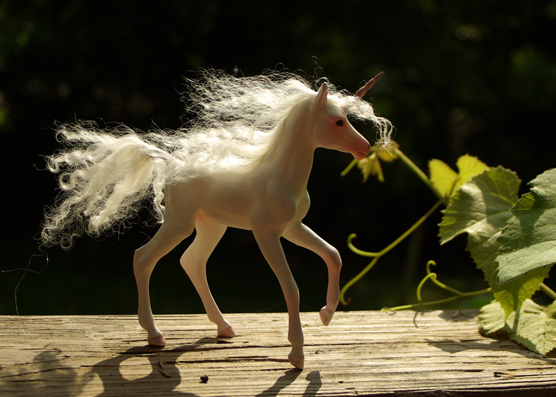 Custom Unicorn Foal III By SovaeArt On DeviantArt