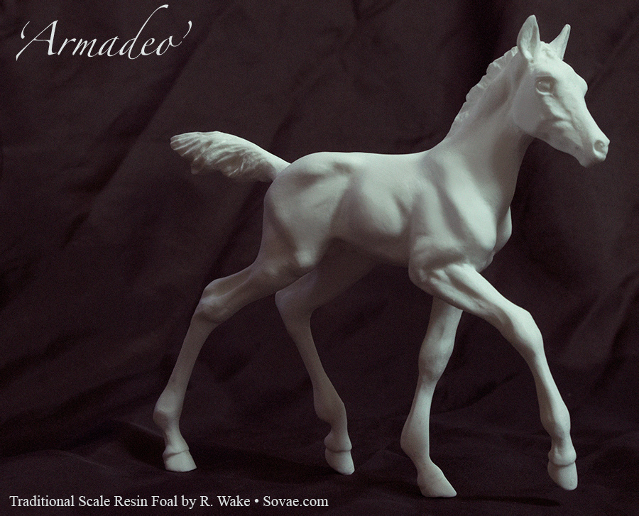 Armadeo, Traditional Model Foal by SovaeArt