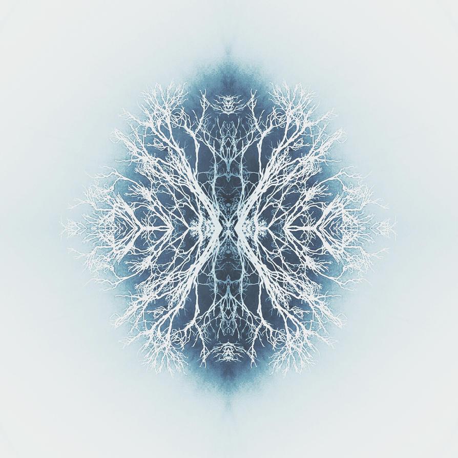 Snowflake by simoneyvette