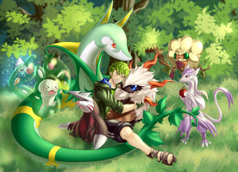 My Pokemon XD by VerdeLeon