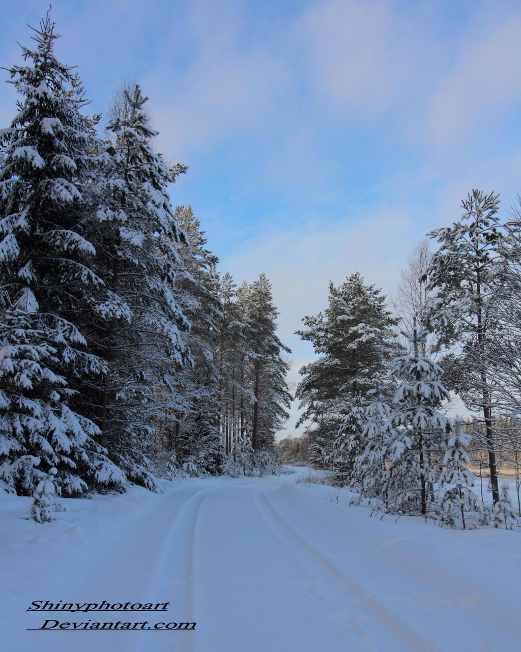 Snowy way by ShinyphotoArt